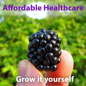 Affordable Healthcare - grow food yourself